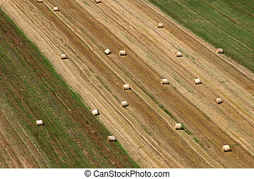 Aerial view of harvest fields in summertime