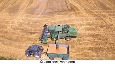 Aerial view of harvesting wheat with a combine