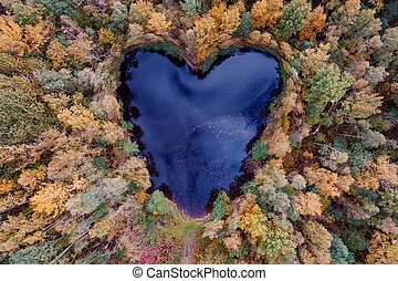 Aerial view of heart shaped pond