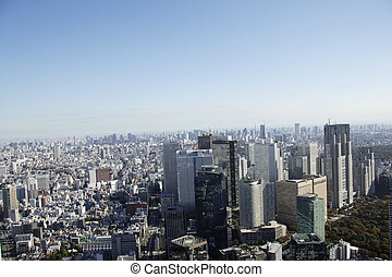 Aerial view of high-rise buildings in the Shinjuku subcenter