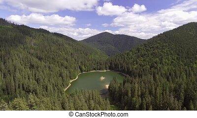 Aerial view of Lake Synevir in Carpathian Mountains in ...