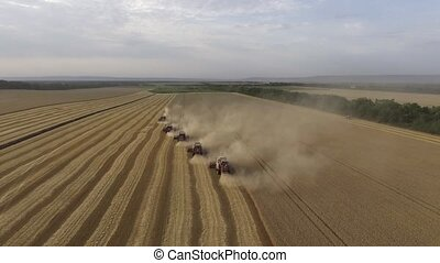Aerial view of modern combine harvesting wheat on the field. Flying directly above combine. Top view. Agriculture scene.