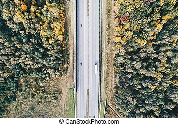 Aerial view of motorway at autumn.