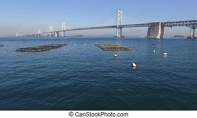 Aerial view of motorway bridge with cage aquaculture located...