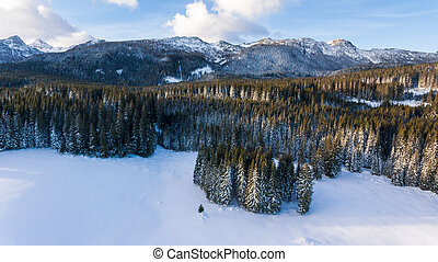 Aerial view of mountain ridge above snow covered forest.