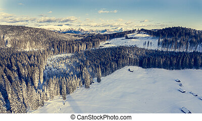 Aerial view of mountains above winter forest.