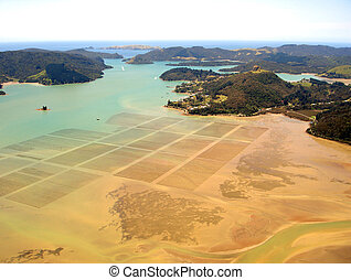 Aerial view of ocean agriculture in Whangaroa Harbour, Northland, New Zealand
