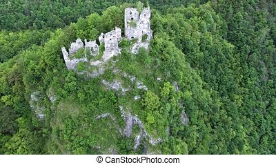 Aerial view of old castle ruins in deciduous forest - Aerial...