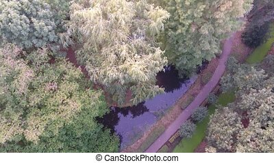 Aerial view of park trees and small lake, drone shoot