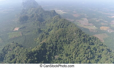 Aerial view of partially destroyed rain forest