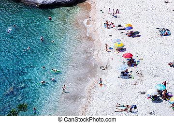 aerial view of people sunbathing on the beach