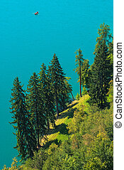 Aerial view of pine and fir trees by lake Bled