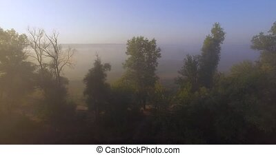 Aerial view of pink sunrise on misty valley of Siverskyi ...
