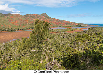 Pirogues River estuary in New Caledonia - aerial view of ...