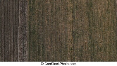 aerial view of plowing a field, background