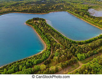 Aerial view of pond on a sunny summer day forest panorama