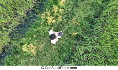 Aerial view of researcher in the jasmine rice field