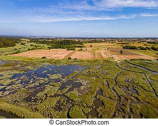 Aerial View of Ribeira do Mourao near the Aveiro Lagoon at ...