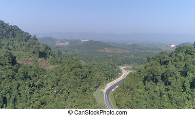 Aerial view of road among beautiful rain forest