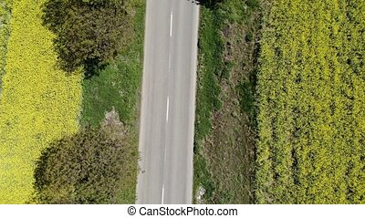 Aerial view of road between rape fields, drone flying across...