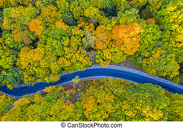 Aerial view of road in autumn forest
