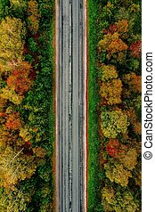 Aerial view of road  in autumn forest with red, yellow and orange leaves.