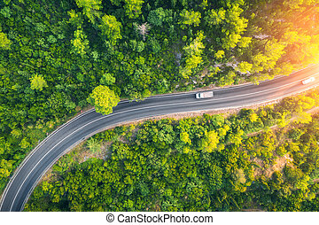 Aerial view of road in beautiful green forest at sunset in spring
