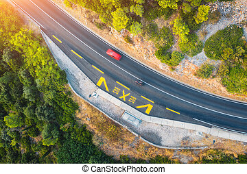 Aerial view of road in beautiful green forest at sunset in summer