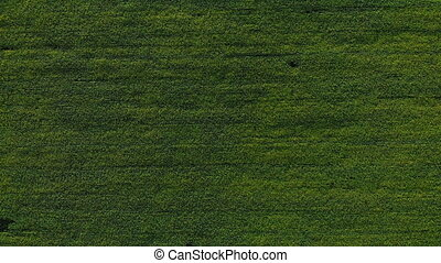 Aerial view of road in the fields. Aerial view of road in...