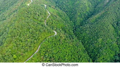 Aerial view of road on mountains and forest. Beautiful ...