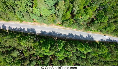 Aerial view of road through the forest. Camera rotation...