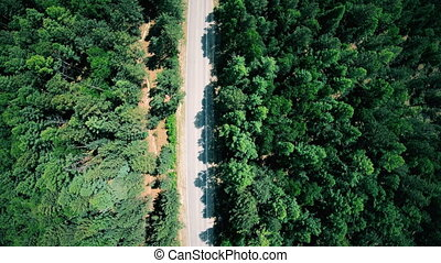 Aerial view of road through the forest. Vertical shot -...