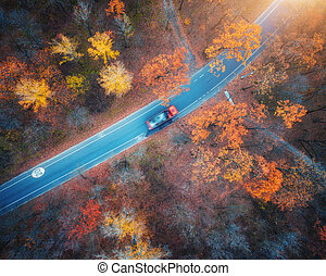 Aerial view of road with blurred car in autumn forest at sunset