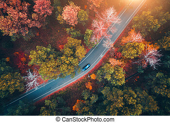 Aerial view of road with blurred car in autumn forest