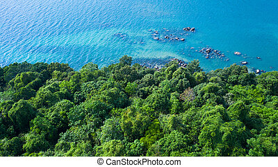 Aerial view of rocky shore with turquoise sea water and green trees