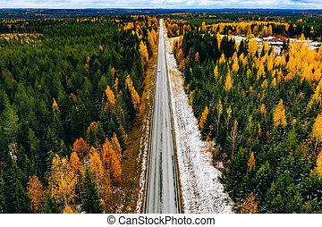 Aerial view of rural road with first snow in yellow and orange autumn forest