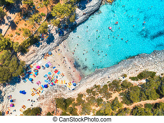 Aerial view of sandy beach with swimming people