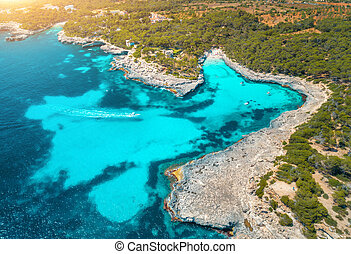 Aerial view of sea with blue water, sandy beach, green trees