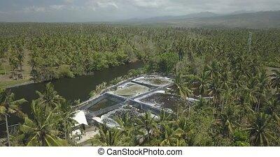 Aerial view of shrimp farm, Bali, Indonesia