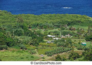 Aerial View of Small ocean side farm community