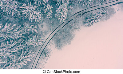 Aerial view of snow covered forest meadow.
