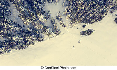 Aerial view of snow covered meadow with forest.