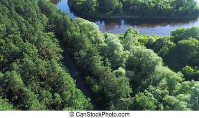 aerial view of sport car driving in forest at evening