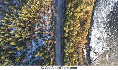 Aerial view of spring rural road in yellow pine forest with melting ice lake