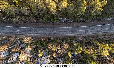 Aerial view of spring rural road in yellow pine forest with snow in rural Russia