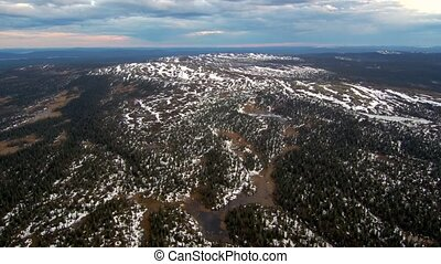 Aerial view of spruce forest mixed with bare trees in spring...
