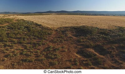 Aerial view of square bales in the field - Approaching to a...