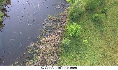 aerial view of swamp - aerial view of small swamp