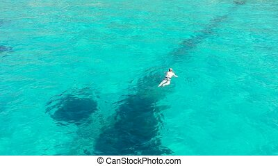 Aerial view of swimmer swimming in the crystal clear ocean.