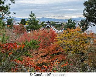 Aerial view of Tenryuji temple during autumn season in Kyoto, Japan